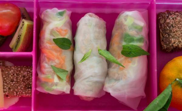 Rice Paper Spring Rolls Kids Lunch Box